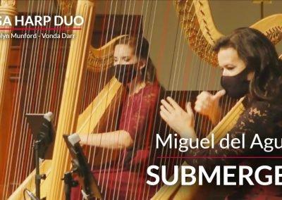 two-harps version of Submerged performed by VegaHarpDuo: Carolyn Munford Vonda Darr